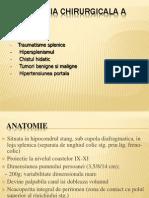 12. Patologia splinei