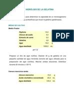 gelatina.pdf