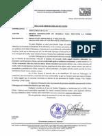 OFICIO_CHIKUNGUYA.pdf