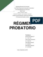 Regimen Probatorio.docx
