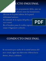 CONDUCTO+INGUINAL