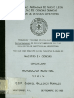 cultivos de melaza.pdf