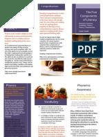 edu 276 brochure