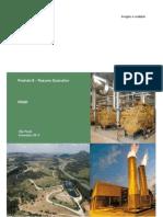 geração de energia eletrica pelo lixo.pdf