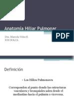 anatomc3ada-hiliar-pulmonar.ppt
