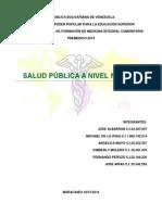 trabajo de salud publica definitivo.docx