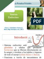 sist. endocrino parte 1.pptx