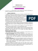 resumen_de_civil_[1]nuevo.doc