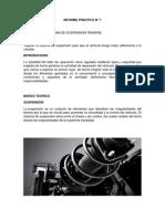 suspension posterior.pdf