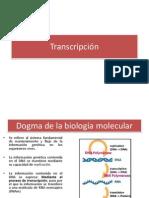 Clase 6. Transcripción.pdf