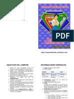 convocatoria mbc 2013 final1.pdf
