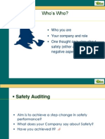 Presentation on Advance Safety Audit