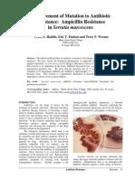 ampiciline (2).pdf