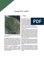 Transpiración vegetal.pdf