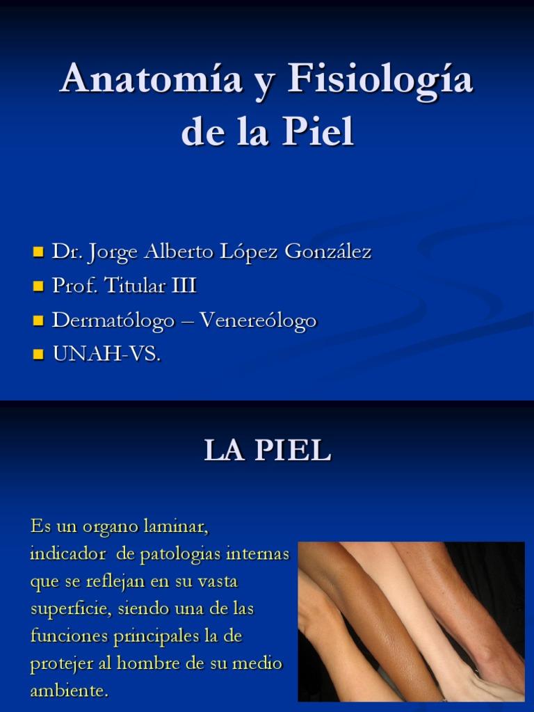 Capitulo I Anatomia y Fisiologia de la Piel..ppt