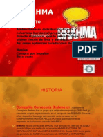BRAHMA TERMINADO.pptx