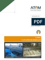 Apuntes Flotación.pdf