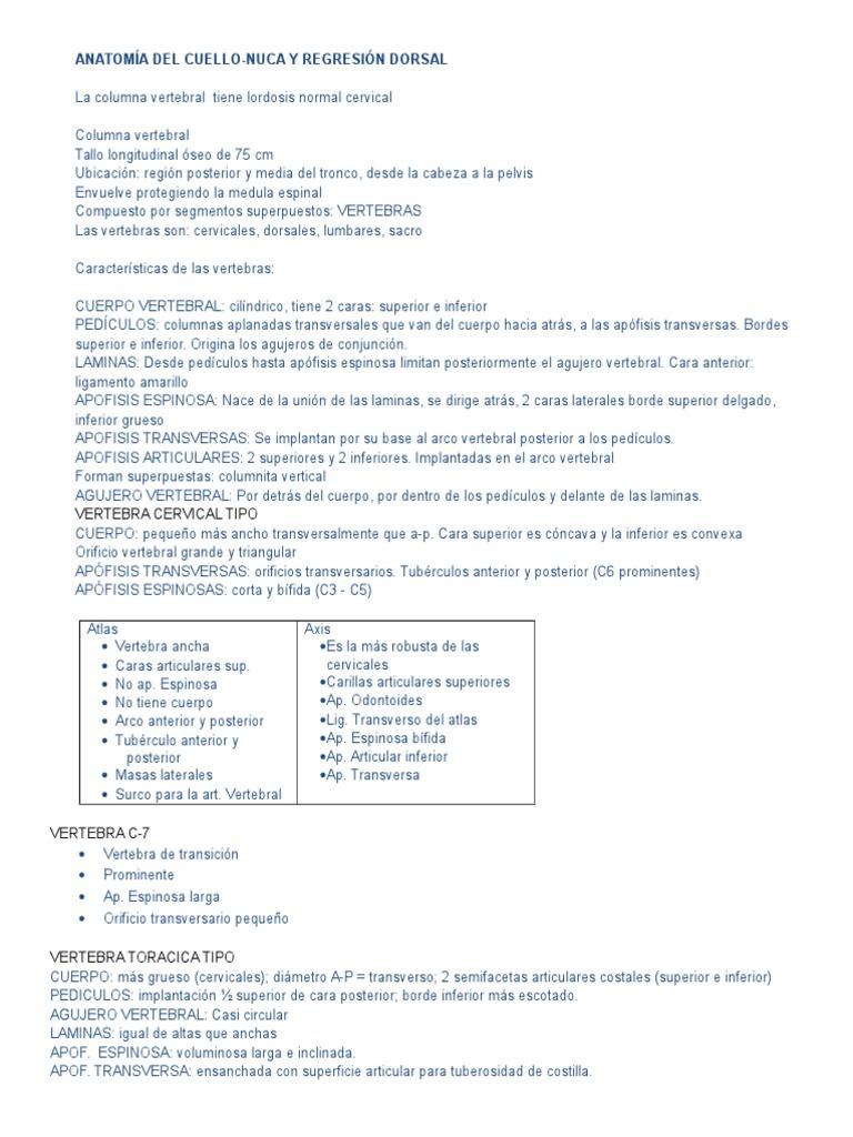 Resumen - Cuello, Nuca y Columna Vertebral.doc