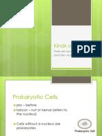 Kinds of Cells Presentation.pptx