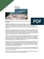 Banjir Wasior 2 Rico