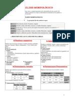 resumen para analisis morfologico.pdf