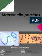Mansonella Perstans