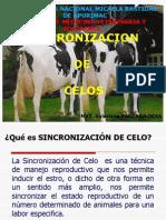 sincronizacion_y_poliovulacion.pptx