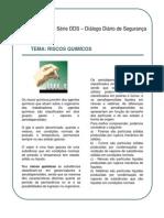 DDS_Riscos_Quimicos.pdf