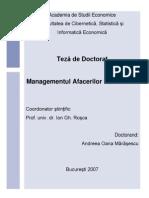 Managementul Afacerilor Electronice - Teza Doctorat Andreea Marasescu (2007)