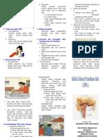 Leaflet ISPA 1.doc