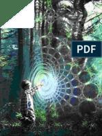 A Morfogenetikus Mező Természete - Rejtélyek Szigete