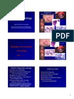 1377482181-Resumendealgunosdiagnosticoscitolgicos.pdf