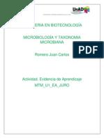 MTM_U1_EA_JURO.docx