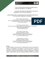 CARACTERIZAÇÃO E ANÁLISE DOS ESPAÇOS PÚBLICOS DA CIDADE DE ARAPIRACA.pdf