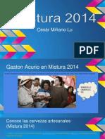 Mistura 2014.pptx