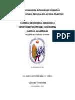 cana-de-azucar-folleto-completo2.doc