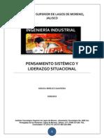 PENSAMIENTO SISTÉMICO Y LIDERAZGO OCUPACIONAL.docx