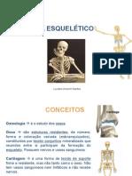 Aula 02 - Sistema Esquelético 1.pdf