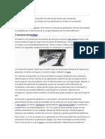GASODUCTO.docx