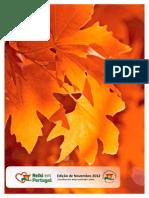 11-2012-Reiki-em-Portugal.pdf