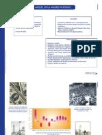HISTÓRIA DE MÉXICO - 12 - De la economía cerrada y protegida a la globalización (1982-1994).pdf