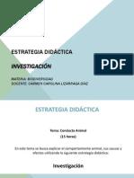 PRESENTACION ESTRATEGIA DIDÁCTICA.pptx