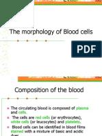 Blood cells morphology.ppt