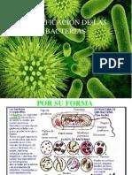 CLASIFICACIÓN DE LAS BACTERIAS.pptx