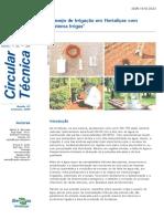 Manejo irrigação Hortaliças Sistema Irrigas.pdf