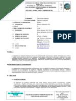 Silabo AA 2013-1.doc