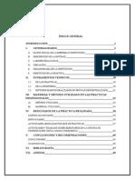 INFORME PRACTICAS PRE PROFESIONALES modelo.docx