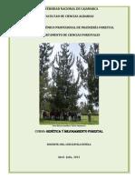 CLASES GMF -2013-I.doc