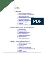 Introducción a los sistemas expertos.pdf
