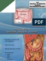 anatomia de colon recto y ano.pptx